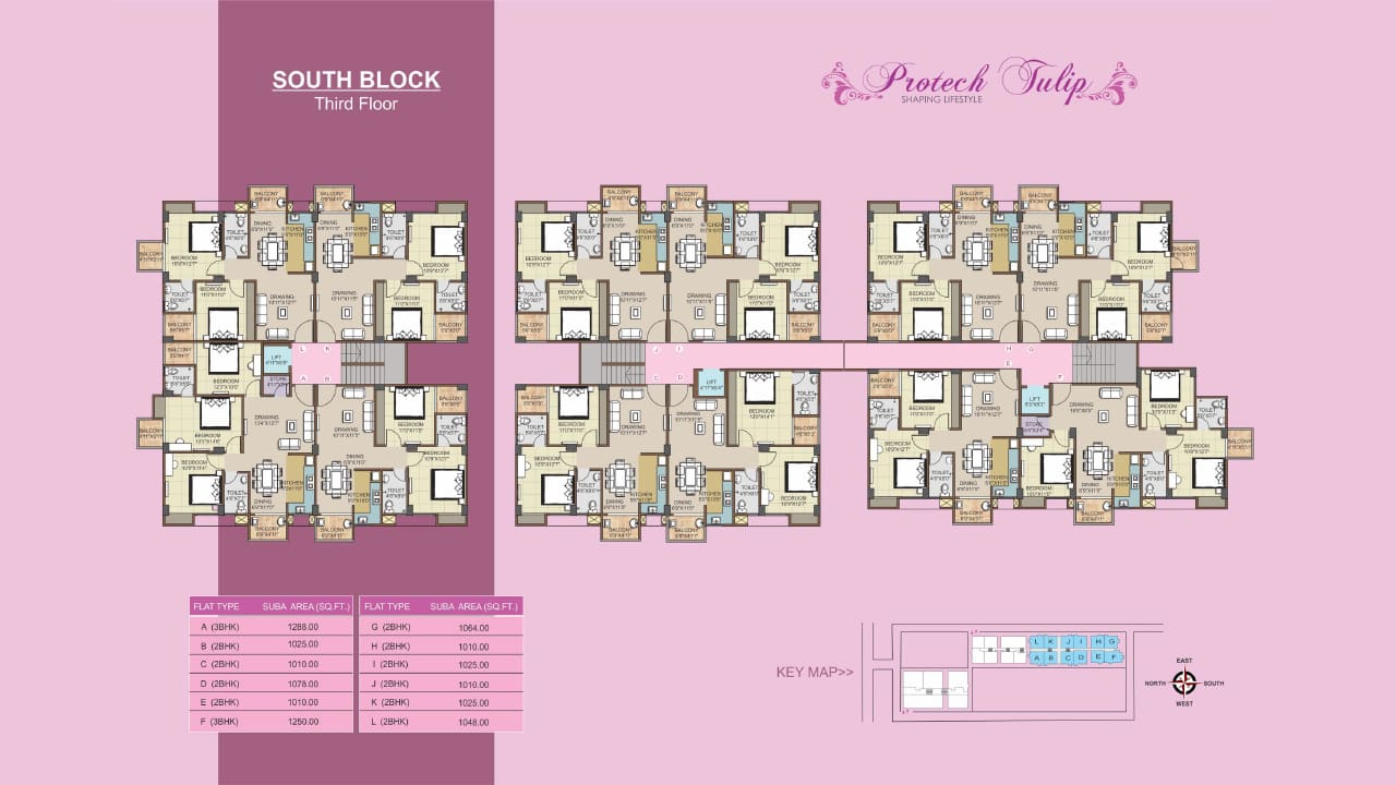 Ready to move 2BHK flat Protech Tulip south block second floor plan
